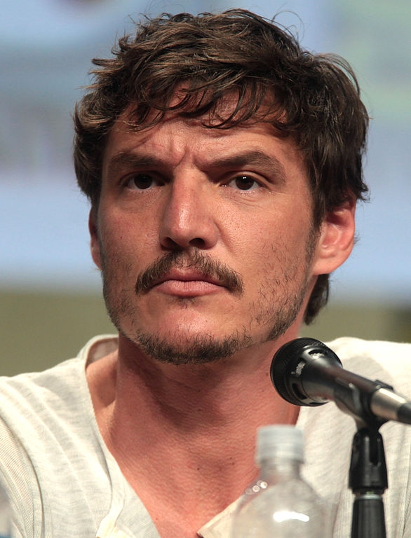 Narcos' Season 3 Cast, Updates: Pedro Pascal Returns as DEA
